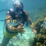 Viagem pela Costa dos Corais no Nordeste