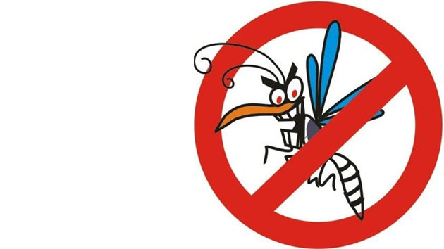 dengue123