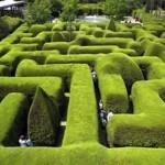 Cercas para jardim 5
