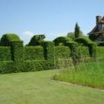 Cercas para jardim 7