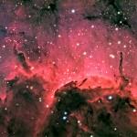 A nebulosa Pelicano (Foto:Divulgação)