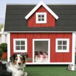 Casinhas para cachorro - modelos, idéias 2