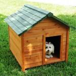 Casinhas para cachorro - modelos, idéias 5