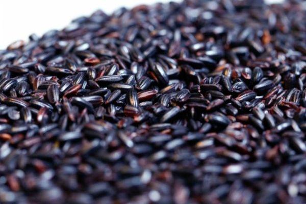 Emagrecer com arroz preto