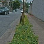 Lei das Calçadas em São Paulo – Como deve ser feito, multas