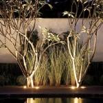As luzes realçam o paisagismo