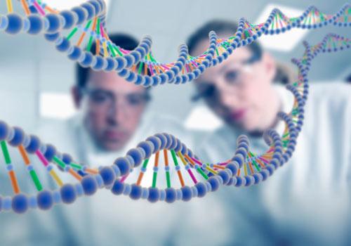 Doenças genéticas mais comuns - quais são