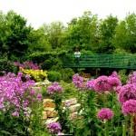 Jardim de Claude Monet, França (Foto:Divulgação)
