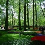 Jardim Keukenhof , Holanda (Foto:Divulgação)