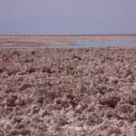 Salar de Atacama (Foto:Divulgaçao)