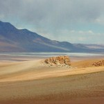 Salta San Pedro, Atacama (Foto:Divulgaçao)