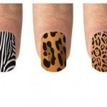 Os estilos zebra, pantera e tigre são os mais procurados