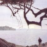 Ilusão de ótica da paisagem (Foto:Divulgação)