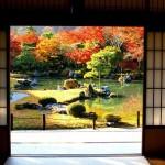 Outono em um tradicional jardim Japonês (Foto: Divulgação)