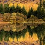 Outono no Norte da Grã-Bretanha (Foto: Divulgação)