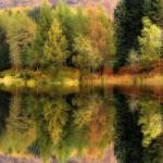 Outono refletido no lago  (Foto: Divulgação)