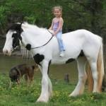 Os cavalos tem uma ligação muito forte com as crianças