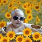 Bebê em meio as flores pegando sol