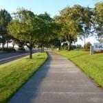 Calçadas verdes como montar, fotos 4
