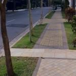 Calçadas verdes como montar, fotos 5