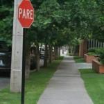 Calçadas verdes como montar, fotos 7