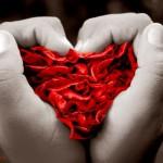 Imagens Bonitas e Românticas - Coração