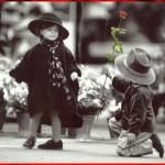 Imagens Bonitas e Românticas - O Amor não Tem Idade