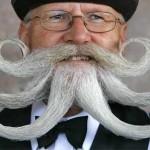 Barbas e bigodes diferentes - Criativo