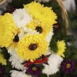 Arranjo de flores - Personalizado