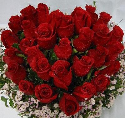 Rosas vermelhas provam a paixão. (Foto: Divulgação)