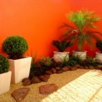 Vasos para decoração externa do ambiente.