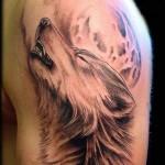 Tatuagem de lobo. Em diferentes culturas o lobo tem um simbolismo e um significado. (Foto: divulgação)