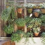 Varanda com parede em madeira de demolição serve de suporte para vasos com flores.