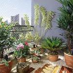 Um jardim perfeito na varanda de apartamento, plantas em vasos e revestimento no piso.