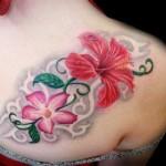 Flor hibisco, delicada e perfeita como as mulheres.