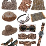 A estampa animal print invadiu os acessórios da moda.