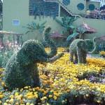 O paisagismo maravilhoso de um jardim com topiaria,.