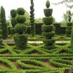 O jardim adquiriu visual charmoso e sofisticado.
