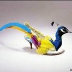 Modelo encanta na riqueza de detalhes e cores. (Foto: divulgação)