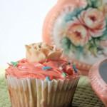 Os cupcakes fazem sucesso entre os americanos e agora estão chegando com força total no Brasil. (Foto: divulgação)