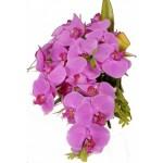 """Buquê de """"Orquídeas"""" significa sensualidade. (Foto: divulgação)"""