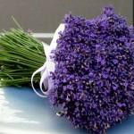 Não importa se as flores são coloridas, grandes ou delicadas, visto que elas são sempre belas e emocionam. (Foto: divulgação)