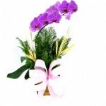 Aproveite o dia dos namorados e faça uma surpresa dando um buquê de flores. (Foto: divulgação)