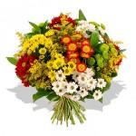 """Uma maneira de potencializar os efeitos de um lindo buquê de flores de presente é dá-lo totalmente sem aviso e """"fora de época"""". (Foto: divulgação)"""