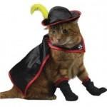"""Gato fantasiado de """"Gato de Botas"""". (Foto: divulgação)"""