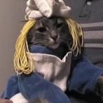 """Gato fantasiado de """"Smurfet"""". (Foto: divulgação)"""