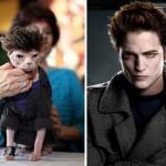 """Gato fantasiado de """"Robert Pattinson"""". (Foto: divulgação)"""