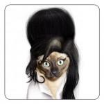 """Gato fantasiado de """"Amy Winehouse"""". (Foto: divulgação)"""
