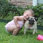 A convivência deve tornar-se a mais espontânea possível, deixando que seu amigo canino se sinta realmente um membro da família. (Foto: divulgação)