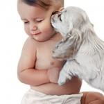 Mamãe quero um cachorro!  Se você ainda não escutou esse pedido do seu filho, tenho certeza que um dia ouvirá. (Foto: divulgação)